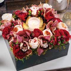 Candlelit Fleur