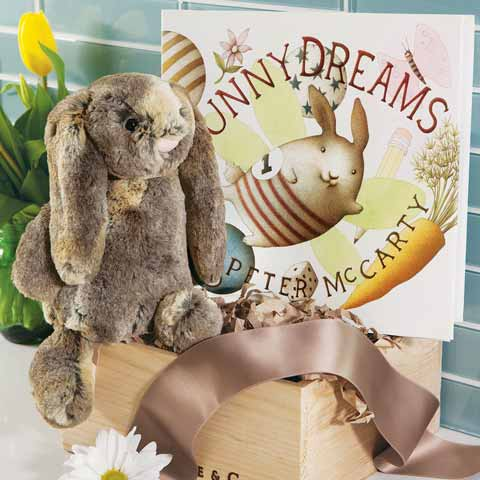 Cuddles The Bunny & Storybook