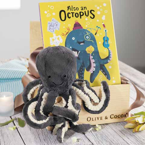 Noodles The Octopus & Storybook