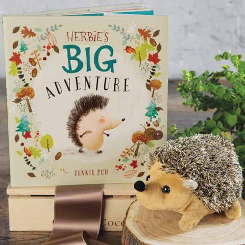 Hedgehog & Storybook