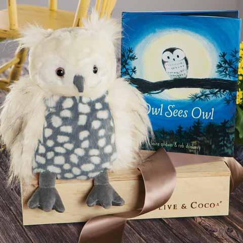 Fuzzy Owl & Storybook