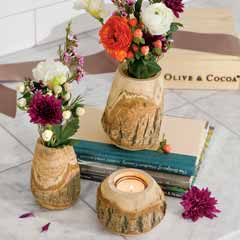 Timberline Decor Trio