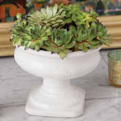 Olympia Succulent Urn