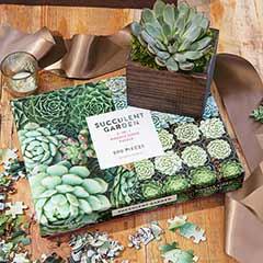 Succulent & Puzzle