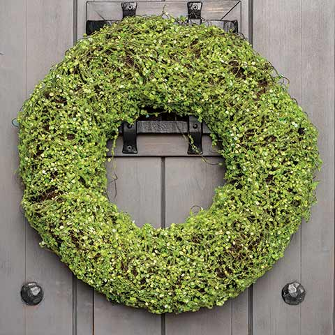 Verdant Vines Wreath