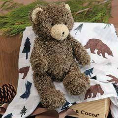 Fuzzy Bear & Swaddle