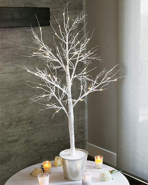 Glittering Lit Silver Birch