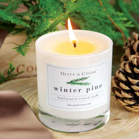 Olive & Cocoa Winter Pine Candle