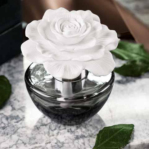 Gardenia Porcelain Diffuser