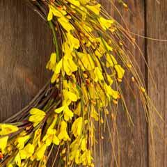 Canary Fleur Wreath