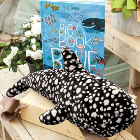 Walter Whale Shark & Book
