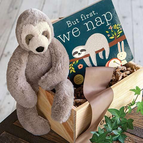 Sleepy Sloth & Storybook