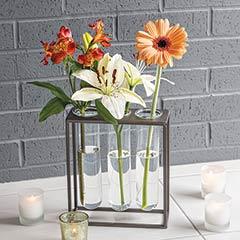 Modern Eva Vase