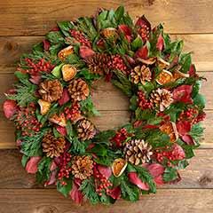 Evergreen Pinecone Wreath