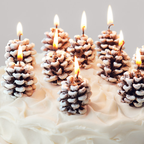 Frosted Pinecone Candles Holiday Olive Amp Cocoa