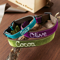 Personalized Royal Oxford Dog Collar