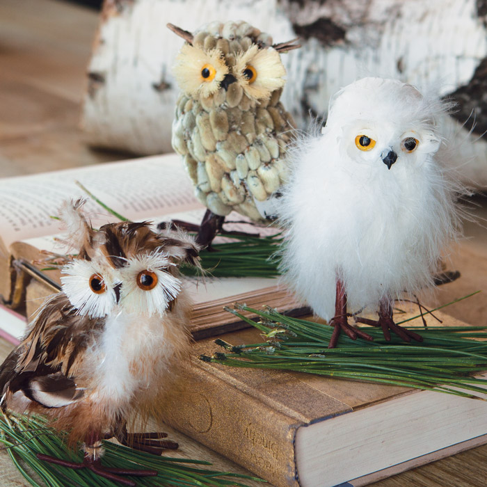 - Snowy Owl Trio, All Gifts: Olive & Cocoa