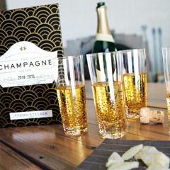 Champagne Fizz Flutes & Book