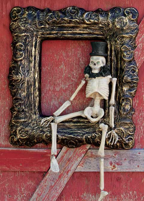 Dapper Framed Skeleton