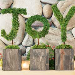 Joy Topiary Trio