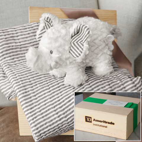 TD Ameritrade Institutional Musical Elephant & Swaddle