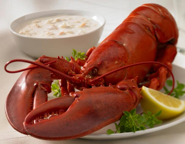 Lobster and Chowder