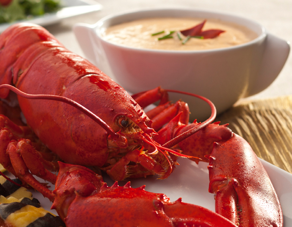 Lobster and Lobster Bisque