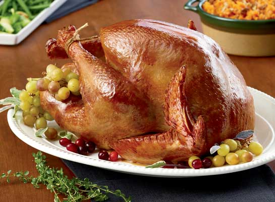 Organic Whole Young Turkey