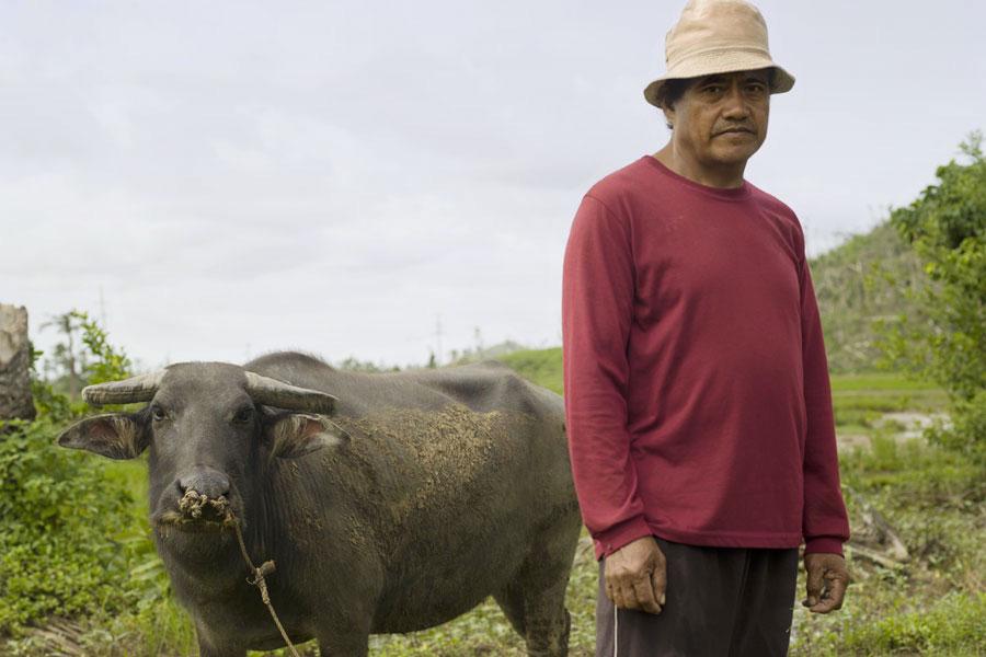 Farmer Gistado Gallaron