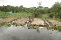 Farmer Shefali Mrithunjoy