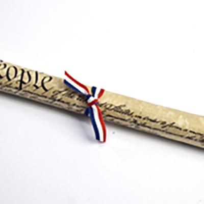Replica Constitution
