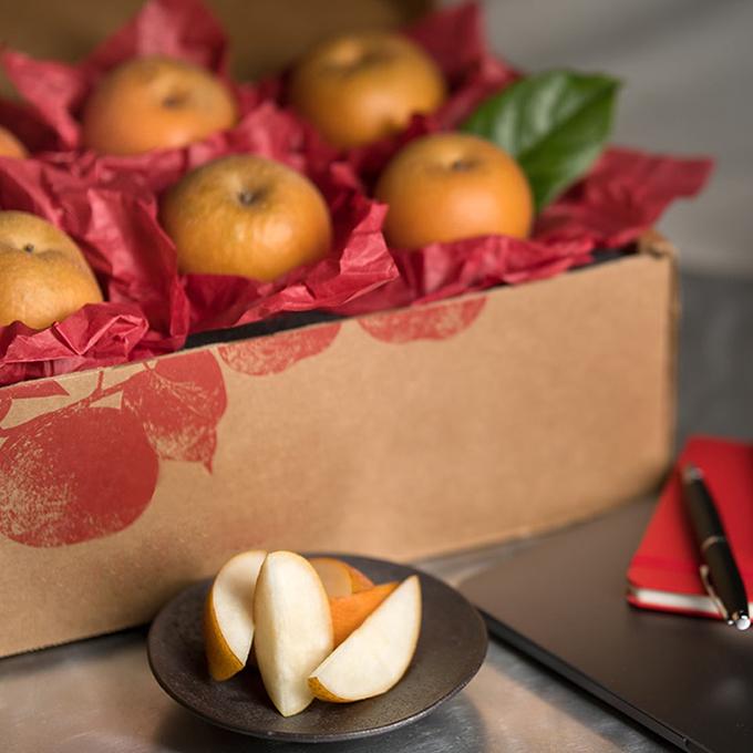 Subarashii Kudamono Pear Gift Box - MED