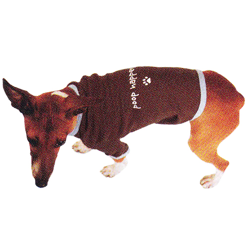 Peace Frogs Doggie Ringer T