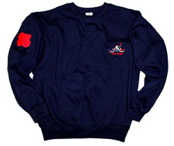 Crewneck Embroidered Sweatshirts