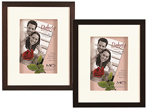 MCS 16x20 Dakota Shadow Box Frame