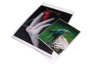 Print File 5x7 Re-Sealable Photo / Art Bags (100 Pack)