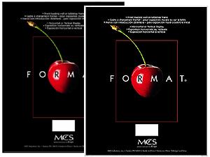 MCS Format Frame 11x14