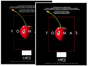 MCS Format Frame 16x20