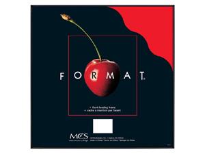 MCS Format Frame 4x4