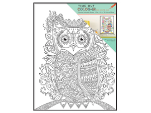 MCS 10x13 Time-Out Color-In Format Frame