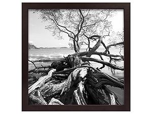 MCS 12x12 Solid Wood Art Frame