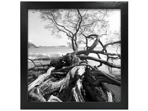 MCS 6x6 Solid Wood Art Frame Black