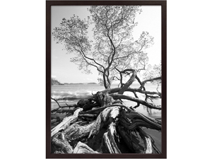 MCS 18x24 Solid Wood Art & Poster Frame