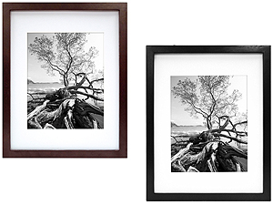 MCS 9x12 Solid Wood Art Frame Matted For 6x8