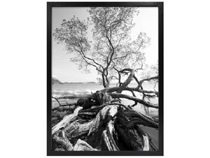 MCS 14x18 Solid Wood Art Frame Black