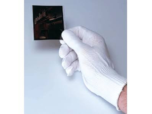 Print File Nylon Lab Gloves - 12 Large/X-Large