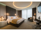 Img - Executive Room, 1 King Bed, City View