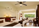 Img - Deluxe junior suite tropical view double