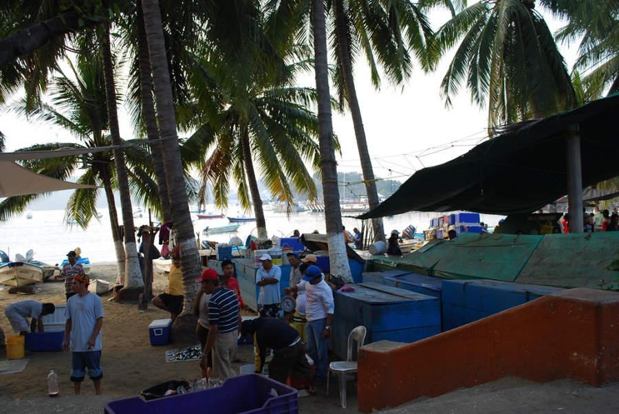 <p>Fishermen of Zihuatanejo&nbsp;offer their fresh goods on some beaches</p>