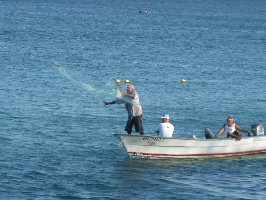<p>Fishing is one of the activities available in Los Cabos Tourist Corridor</p>